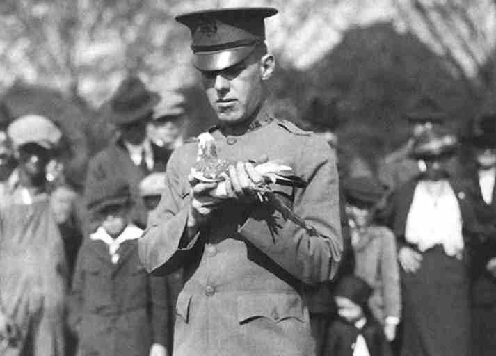 Soldato dei Signal Corps con un piccione